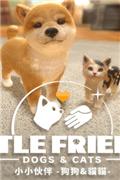 小小伙伴:狗狗與貓貓